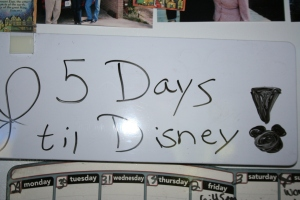 DisneyCountdown 9 035